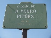 Pedro Pitoes street